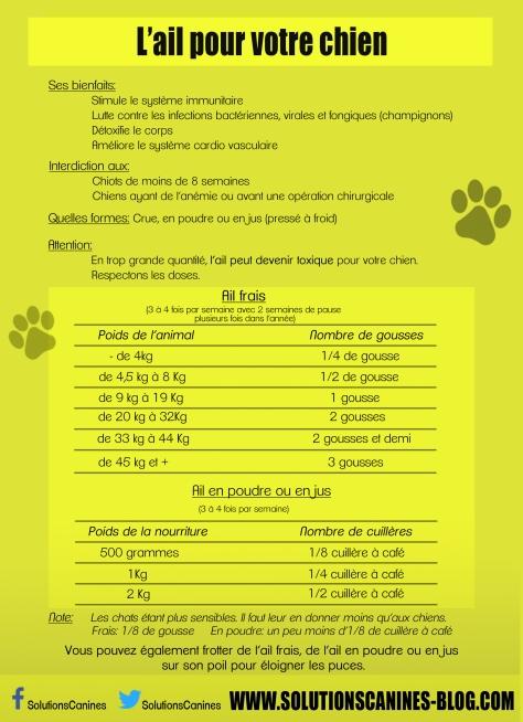 L'ail pour votre chien2