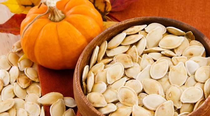 Découvrez les bienfaits des graines de potiron pour votre chien