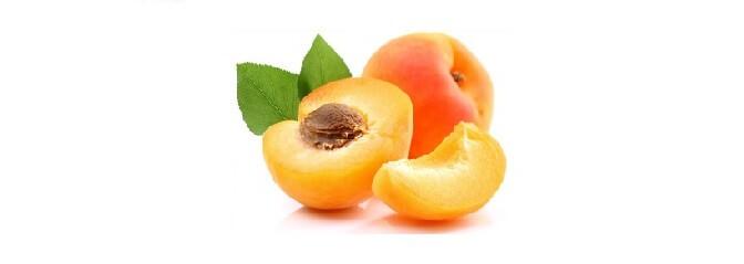 Des abricots pour votre chien?