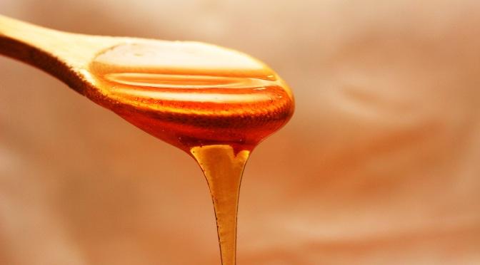 Le miel et la santé de votre chien